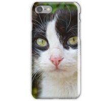 Monastary Cat iPhone Case/Skin
