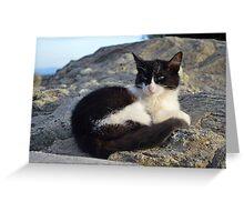 Meteora Cat Greeting Card