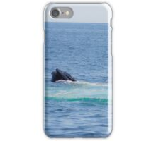 A Boston View 103 iPhone Case/Skin