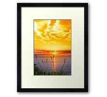 wild tall grass on the wild atlantic way orange sunset Framed Print