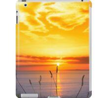 wild tall grass on the wild atlantic way orange sunset iPad Case/Skin