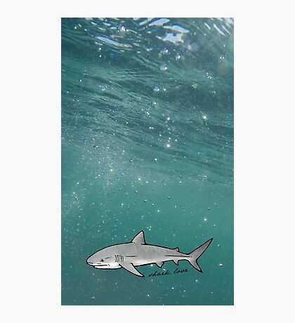shark love Photographic Print