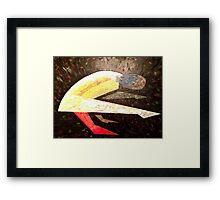Art of the Asana - Tittibasana Framed Print