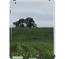 Knee High by the Fourth of July iPad Case/Skin