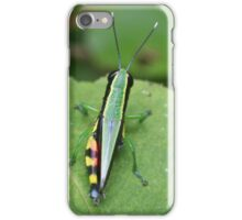 Green Bug on Stem again iPhone Case/Skin