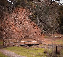 The Little Bridge by Pink Poppy  Photography