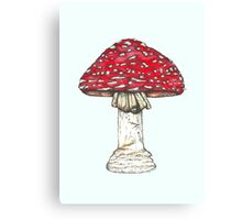 Fly Agaric Toadstool Canvas Print