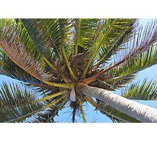 Havana 13 Photographic Print