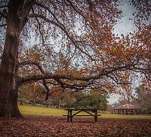 The park bench & Gazebo by Pink Poppy  Photography