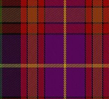 01504 Tribal #2 Tartan  by Detnecs2013