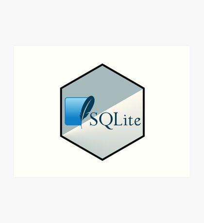 SQL lite hexagonal programming language  Art Print