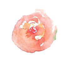 Rose watercolor Photographic Print