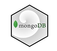 mongo DB hexagonal programming language Photographic Print