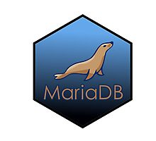 maria DB hexagonal programming language sticker Photographic Print