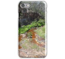 Wentworth Falls Park iPhone Case/Skin