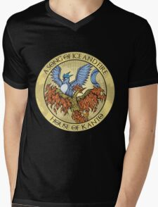 Song of Ice and Fire Mens V-Neck T-Shirt