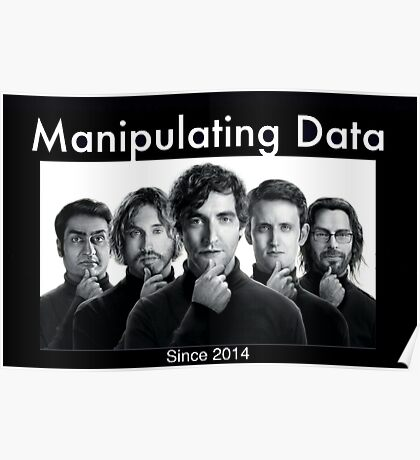 Silicon Valley: Manipulating Data Poster