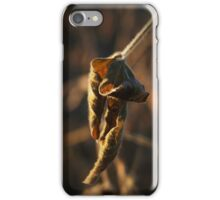 Withered Leaf iPhone Case/Skin