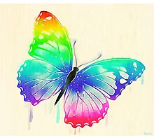 Rainbow Washed Butterfly Photographic Print