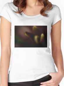 A Point to Life Women's Fitted Scoop T-Shirt