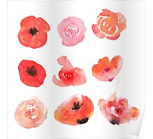 Flowers watercolor illustration Poster