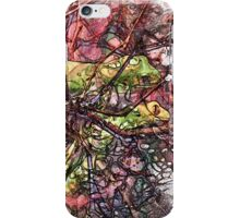 The Atlas Of Dreams - Color Plate 165 iPhone Case/Skin
