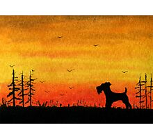 Airedale Terrier Sunset watercolour Photographic Print