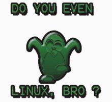 LINUX BRO by Dan Richardson