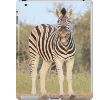 Zebra - African Wildlife Background - Funny Nature iPad Case/Skin