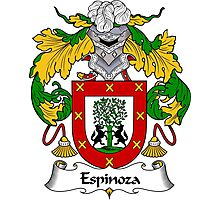 Espinoza Coat of Arms/Family Crest Photographic Print