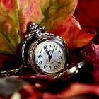 It's Autumn Time by Evita