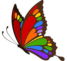 Colorful Rainbow Butterfly Photographic Print