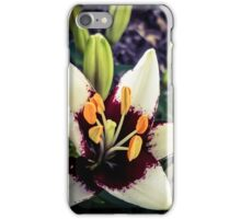 Lily 4 iPhone Case/Skin