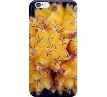 Cactus 2 iPhone Case/Skin