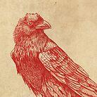 Red Raven  by Terry  Fan