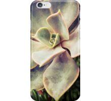 Succulents 4 iPhone Case/Skin