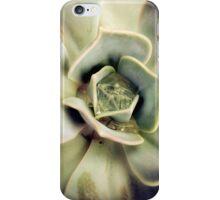 Succulents 7 iPhone Case/Skin
