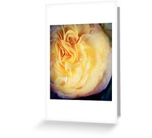 Flower 11 Greeting Card