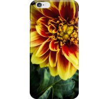 Flower 13 iPhone Case/Skin
