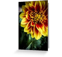 Flower 13 Greeting Card