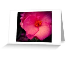 Pink Spiral Greeting Card