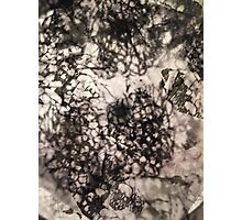 Under the Microscope, Light & Ink Photographic Print