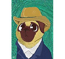 Vincent Van Pug Photographic Print