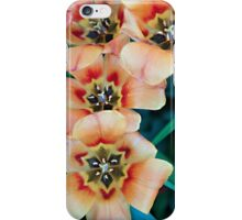 5 is a Crowd iPhone Case/Skin