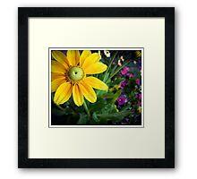 Flower 15 Framed Print