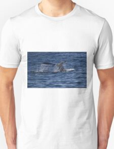 A Boston View 110 Unisex T-Shirt