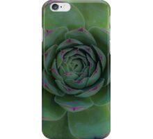 Succulents 9 iPhone Case/Skin