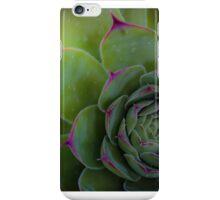 Succulents 10 iPhone Case/Skin