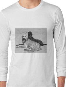 Briard Beach Bums #2 Long Sleeve T-Shirt