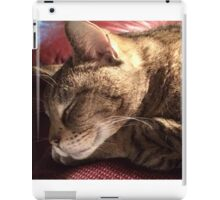 My Fur Baby iPad Case/Skin
